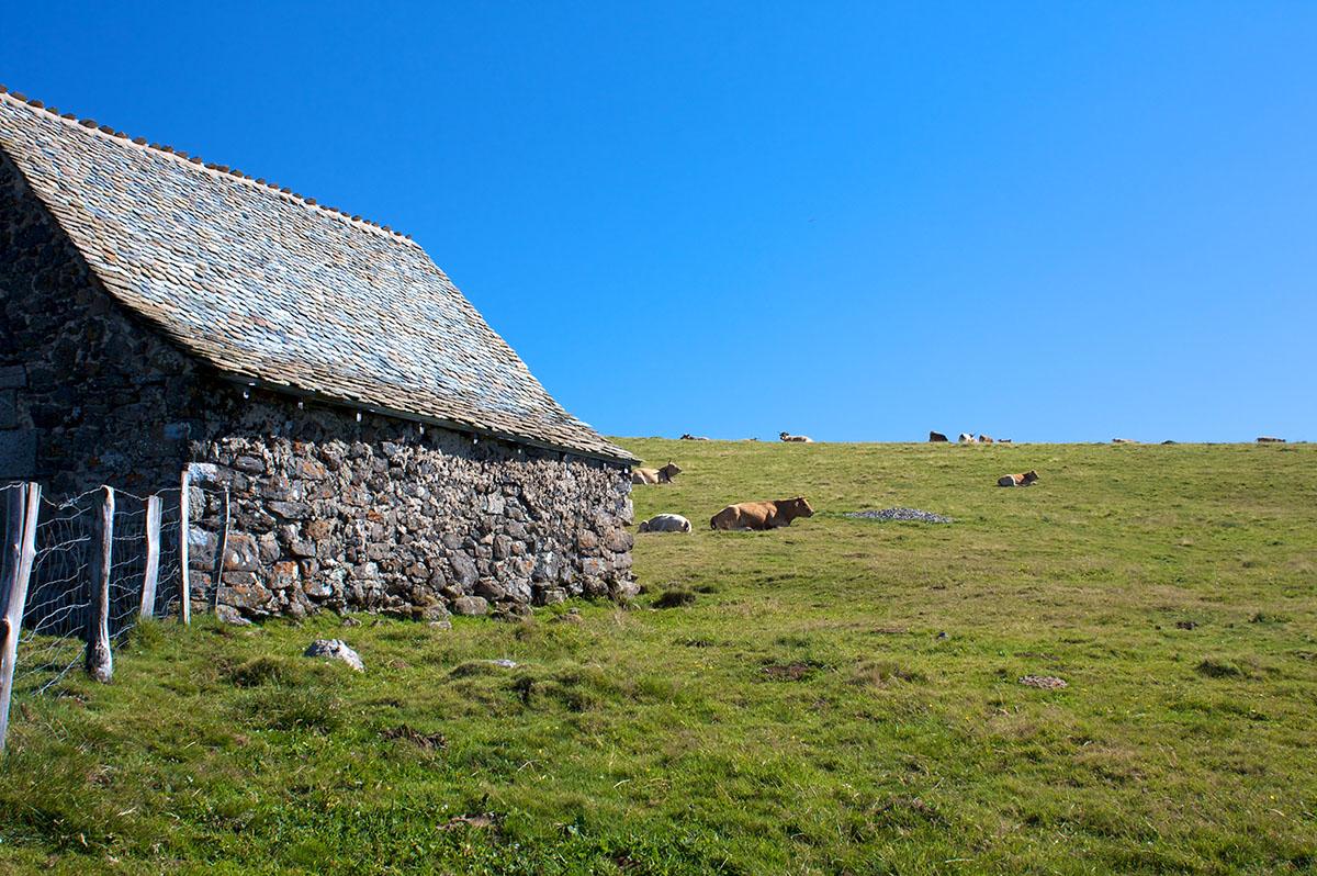 buron-aubrac-local-vache-lozere